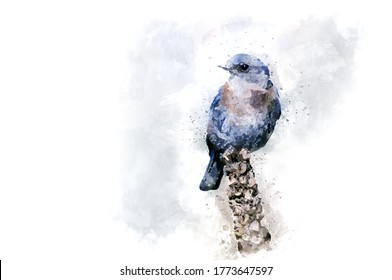 Watercolor Draw Style - A bright blue bird sits at the end of a branch
