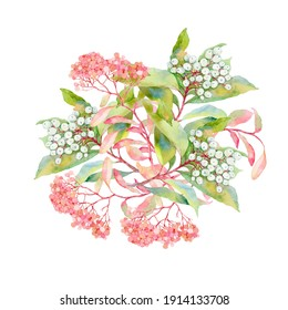 Watercolor drawing of a bouquet of garden plants isolated on a white background. Hand-drawn illustration. Painting for postcards, prints, invitations, fabrics.