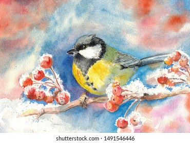watercolor drawing of chickadee on a branch of Rowan