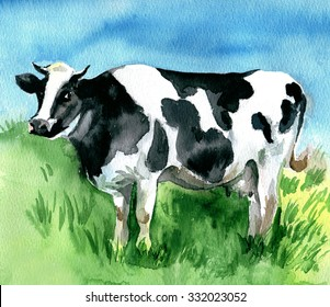 Watercolor drawing cow