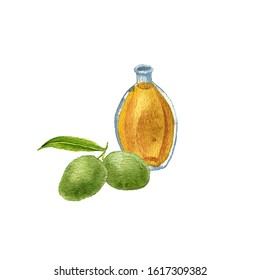 watercolor drawing dika oil, bottle of vegetable oil and wild mangoes, hand drawn illustration