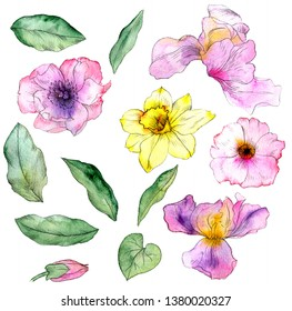 watercolor drawing flowers and leaves isolated at white background, hand drawn illustration