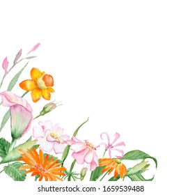 watercolor drawing - frame with spring flowers, composition. orange flowers