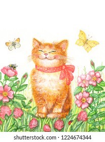 Watercolor drawing funny kitten on a floral background with butterflies