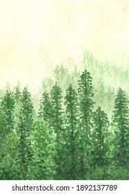 Watercolor drawing. Green mountains with spruce forest trees in fog. Design elements, wallpaper, background.