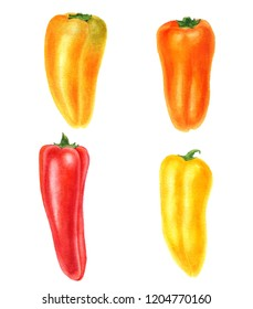 watercolor drawing red sweet peppers isolated at white background, paprika, hand drawn illustration
