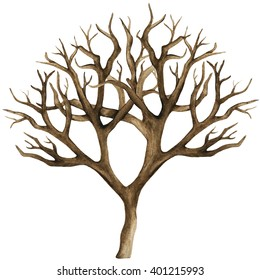 Watercolor dry tree, bare tree, branch, bough, no leaves closeup isolated on white background. Hand painting on paper
