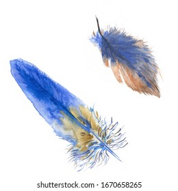Watercolor easter bird feather set. Hand painted orange and blue feathers isolated on white background. Holiday wildlife illustration for design, print, fabric or background.