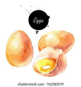 Watercolor eggs product illustration. Painted isolated natural organic fresh eco food on white background