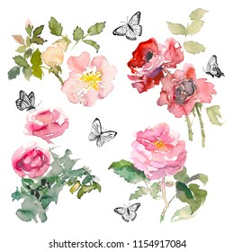 Watercolor element of garden roses and green leaves with butterfly on the white background. Watercolor romantic garden flowers sketch. Card template with message Summer.