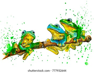 Watercolor exotic frogs with splash. Hand drawn illustration isolated on white.