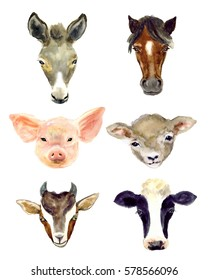 Watercolor farm animals sketch set. Farm pig, horse, goat, donkey, sheep, cow on the white background