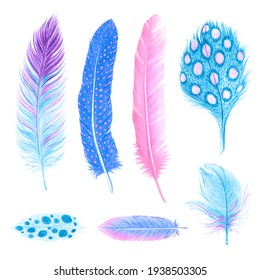 Watercolor feathers. Bohemian style. Isolated ethnic feathers on white background. For decoration, cards, invitations.