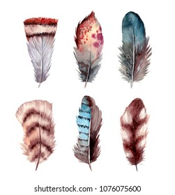 Watercolor feathers illustrations