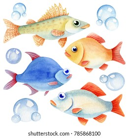 Watercolor fish caracter and bubbles on the white background