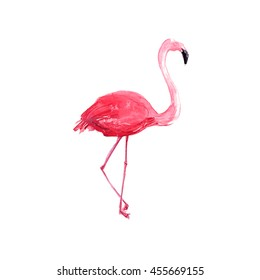 Watercolor flamingo illustration. Standing pink bird isolated on white background