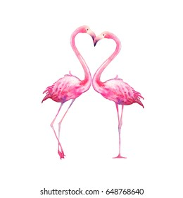Watercolor flamingo in love. Hand painted bright exotic birds kissing isolated on white background. Animal illustration