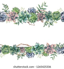 Watercolor floral banner with succulents, tree branch and eucalyptus. Hand painted cacti, eucalyptus leaves and branches isolated on white background.  Botanical illustration for design, print