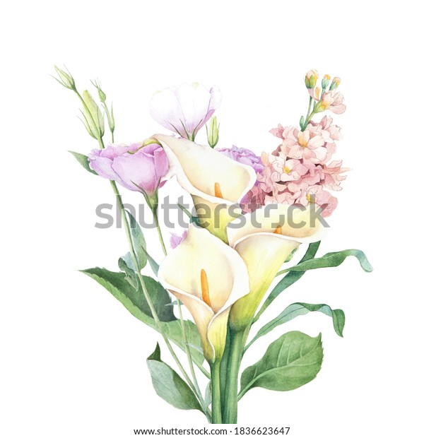 Watercolor floral bouquet with calla lillies. Isolated hand drawn illustration. Elegant flowers arrangement.