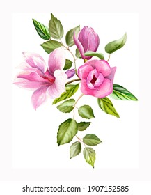 Watercolor floral bouquets with blooming pink magnolia flowers and branches isolated on white background. Spring or summer flowers for invitation, wedding or greeting cards.