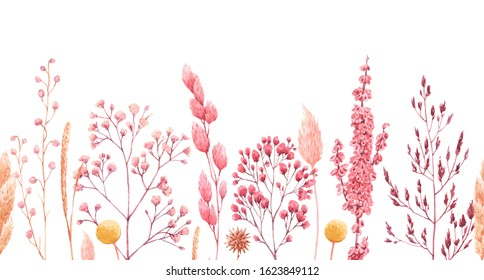 Watercolor floral horizontal pattern, flowers and ears of dried flowers,   white seamless wallpaper