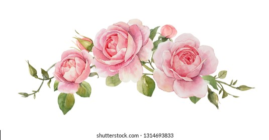 Watercolor floral illustration of delicate pink English rose and spring flowers.   .greeting card