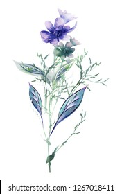 Watercolor Floral Illustration. Nature Surface Pattern. Hand Painted Design Template.