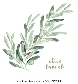 Watercolor floral illustration with olive branches and leaves