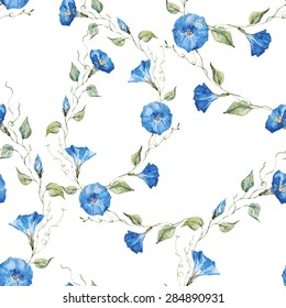 watercolor floral pattern, blue delicate flowers morning glory