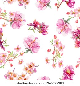 Watercolor floral pattern with cherry berries and cherry flowers on a white background. - Illustration
