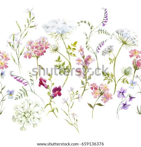 Watercolor floral pattern delicate flower wallpaper stock watercolor floral pattern delicate flower wallpaper wildflowers pinktansy pansies white mightylinksfo