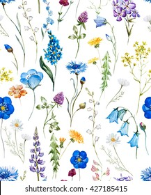 watercolor floral pattern on a white background, wild flowers, cornflower, dandelion, chamomile, clover, white background
