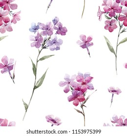 Watercolor floral pattern with pink flowers, phlox flowers
