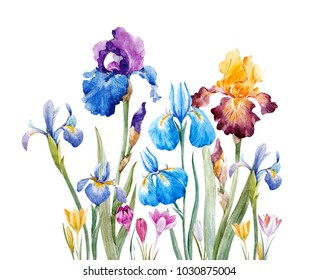 Watercolor floral print, Iris flowers, crosses, spring card
