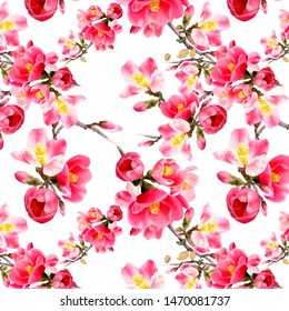 Watercolor floral floral seamless pattern  with japan quince flowers and green leaves isolated on white background.