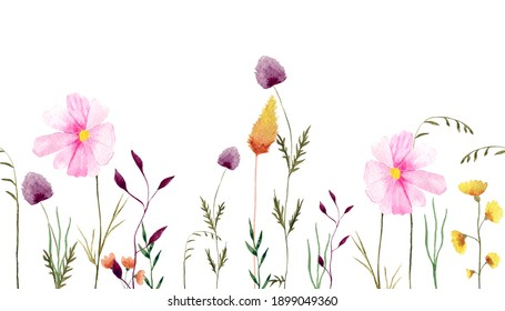 Watercolor floral seamless pattern. Panoramic horizontal illustration with wildflowers, leaves.