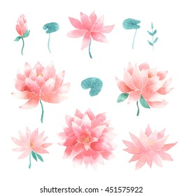 Watercolor floral set with pink lotus flowers, branches and leaves isolated on a white background