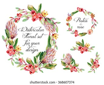Watercolor floral set with protea, roses for your design. Two round frame and small bouquets for decoration.