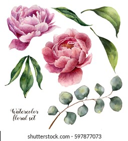 Watercolor floral set. Vintage leaves, silver dollar eucalyptus and peony flowers isolated on white background. Hand drawn botanical illustration for design.
