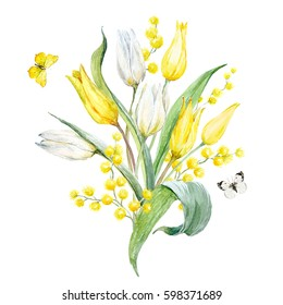 A watercolor floral spring bouquet. A branch of mimosa flowers. White and yellow tulips. Greeting spring card.Butterflies
