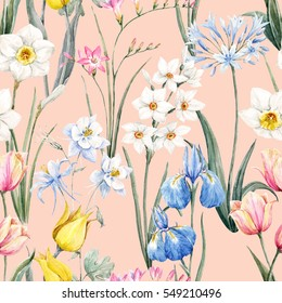 Watercolor floral spring pattern, botanical illustration. tulip flowers. narcissus. pink freesia. blue iris. Blue Aquilegia.Retro wallpaper