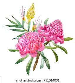 Watercolor floral tropical exotic bouquet.  flowers ginger. palm leaves. Torch Ginger . tropical print. Australian floral bouquet