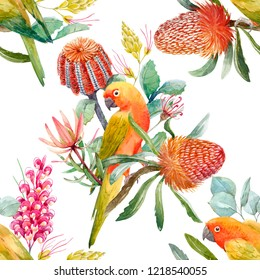 Watercolor floral tropical pattern. Yellow parrot lovebirds, flowers Banksia. Australian plants,  Grevillea