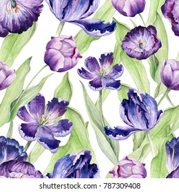 Watercolor floral tulip backgraund. Seamless colorful spring pattern. Watercolour violet tulip plant. Purple blossom drawing.