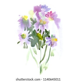 Watercolor floral wildflowers bouquet. Flower of echinacea and leaves. Greeting card