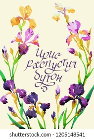 Watercolor floral wreath with iris flowers on white. Colorful botanica card. Russian text: Iris blossomed out. Modern brush calligraphy. Great for decorating.