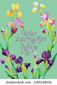 Watercolor floral wreath with iris flowers. Colorful botanica card. Russian text: Iris blossomed out  Modern brush calligraphy. Great for decorating.