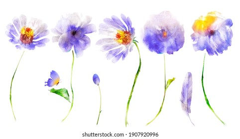 Watercolor flowers, butterfly, bud and feather isolated on white background. Set