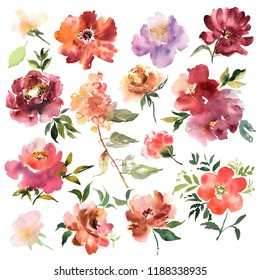 Watercolor flowers hand drawn colorful beautiful floral set with yellow pink red blossom plant for cards prints and invitation