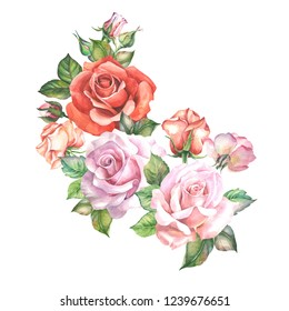 watercolor flowers illustration with roses